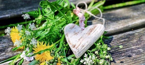 flowers_1341687_960_720_650x410