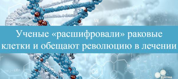 ДНК р
