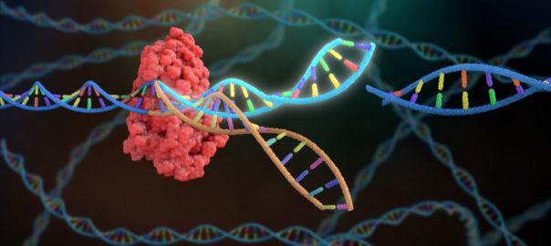 CRISPR-gene-editing-1024x512